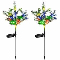 Solar Christmas Tree Sp S Plant 1